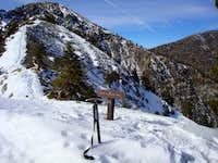 Holtgrefe Ridge to Mt. Harwood