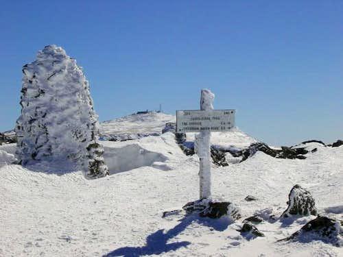 Mt. Jefferson signpost -...