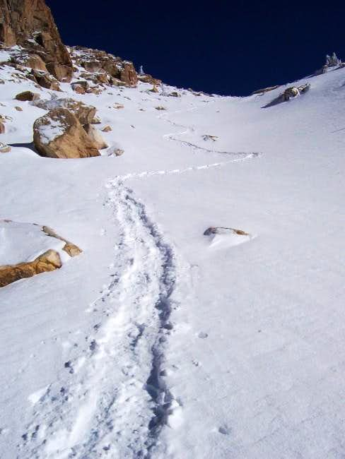 Alta Peak Trail - Dec 21, 2003
