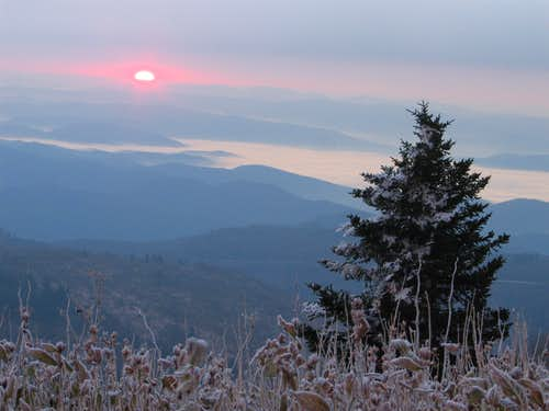 Morning Color - Black Balsam Knob, NC