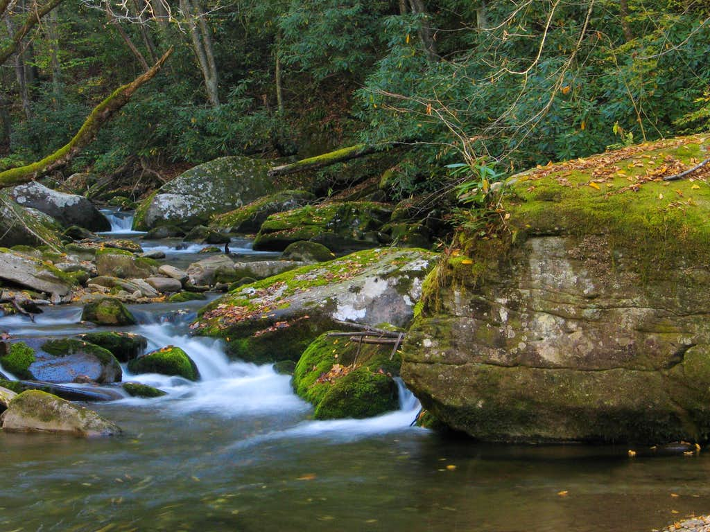 Straight Fork Creek, GSMNP