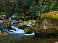 Straight Fork Creek, GSMNP