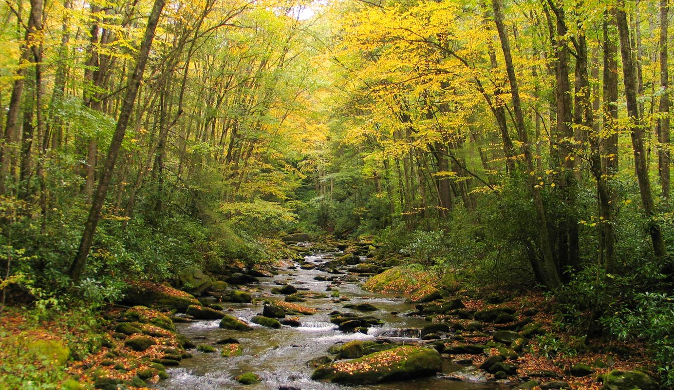 Fall Autumn Colors And Moods Photo Albums Summitpost