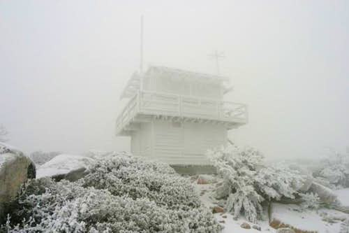 Here's the summit on Friday,...