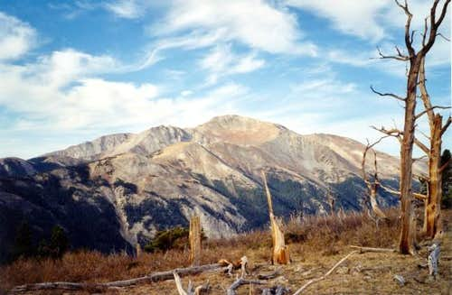 Mount Yale from near...