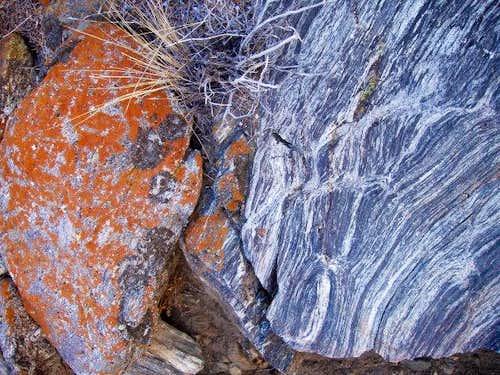 Ryan Mtn Rocks and Lichen