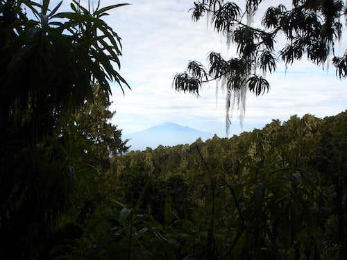 Mt. Meru through the Jungle