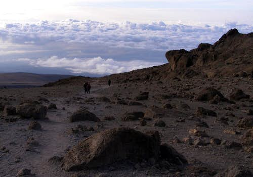 Above the Clouds on Kilimanjaro