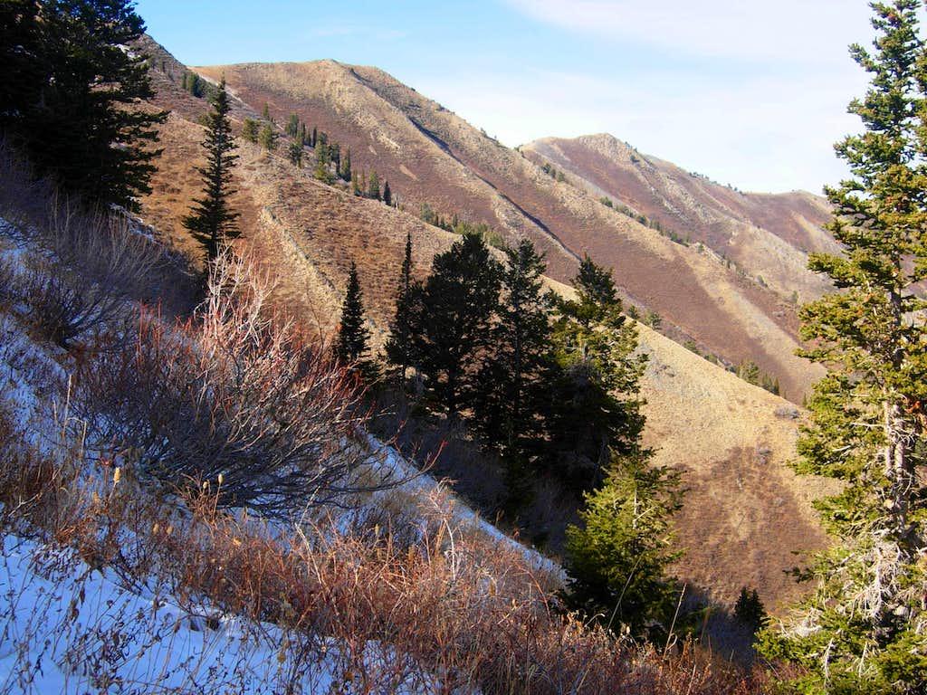 Scout Peak