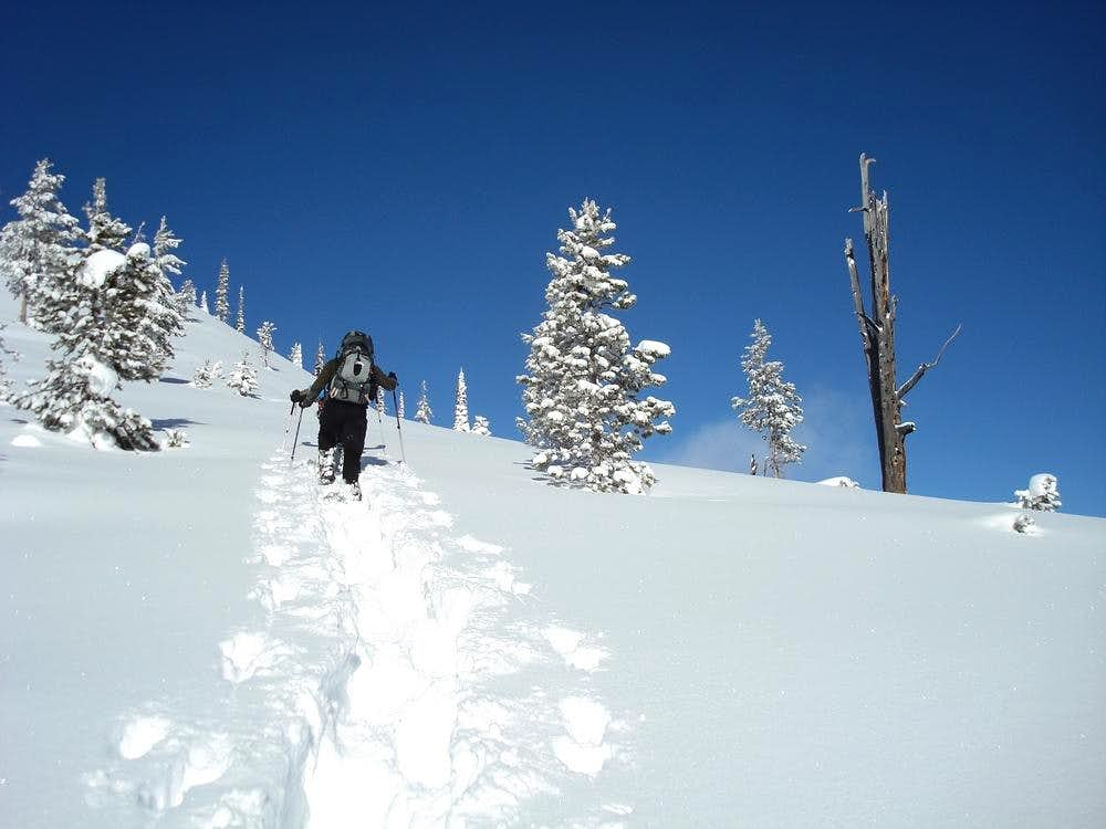 Bull Trout Point Snowshoeing