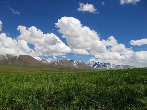 Deosai Plateau, Grassy Plains