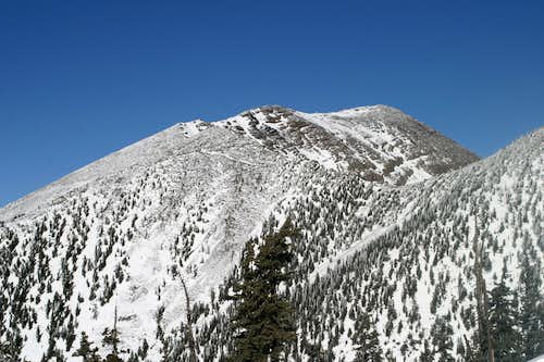 Summit from 11,500 ft.