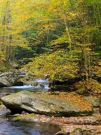 Southern Appalachian Gold