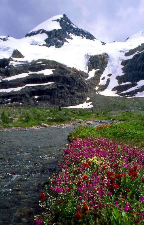 David Basin (and peak)