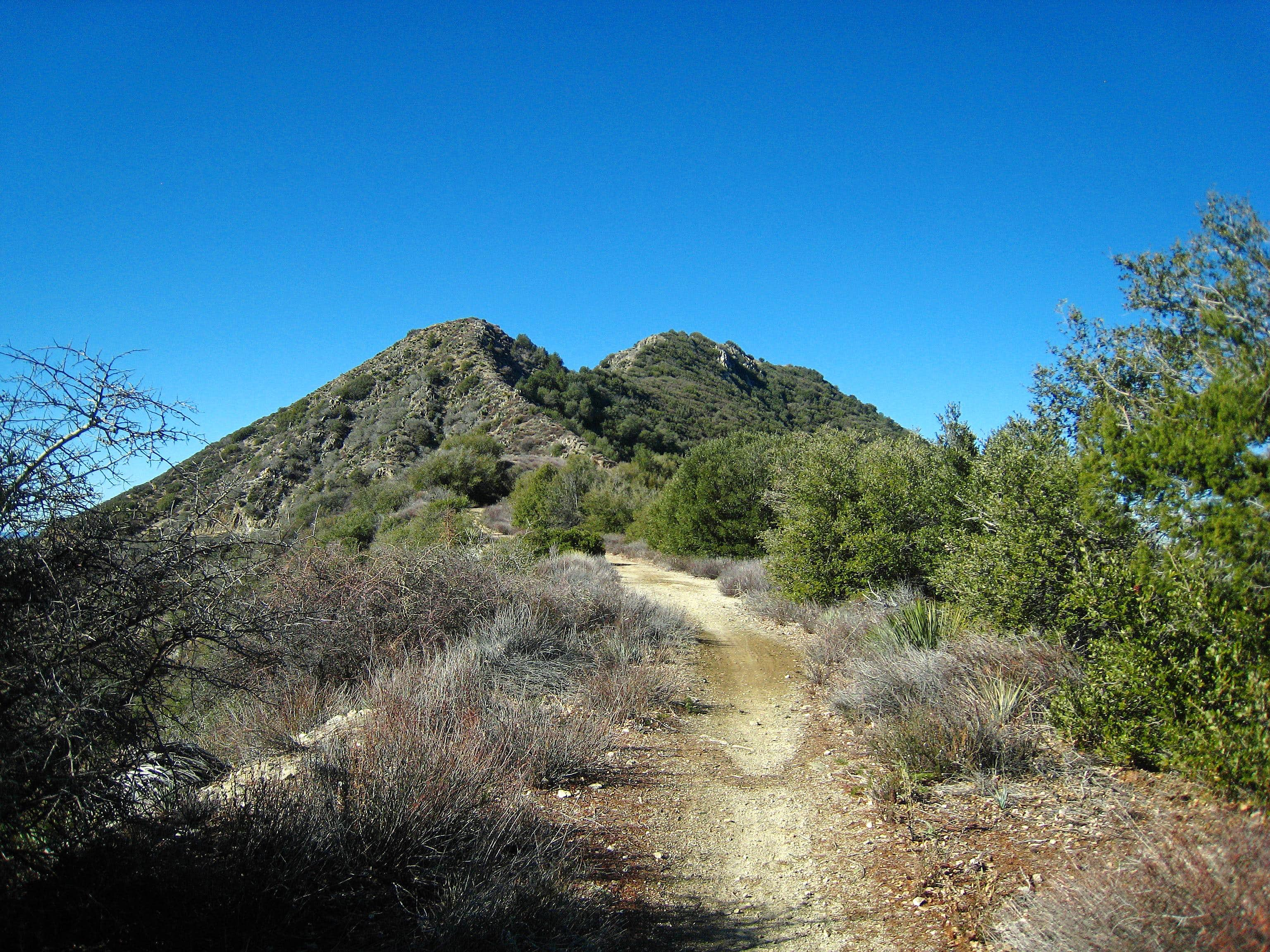 Josephine Peak via Colby Canyon