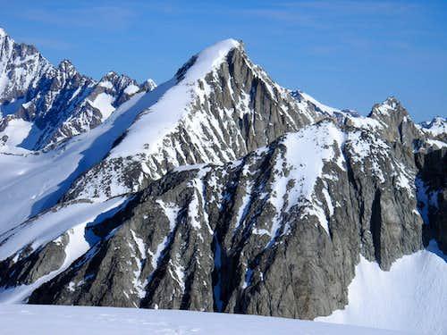 Oberaarhorn 3631m