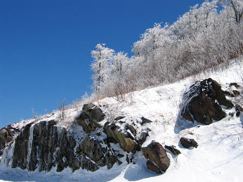 Rime Ice in Unicoi Mountains