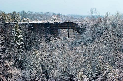 Winter at Natural Bridge