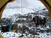 Mt. Everest Interim Camp