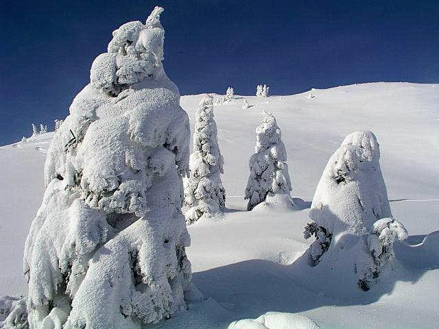 Tour skiing terrains below...