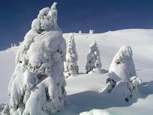 Tour skiing terrains below...