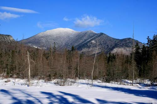 South Side of Mt. Carrigain and Signal Ridge