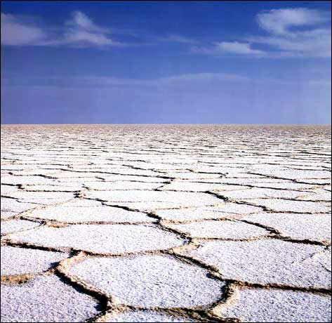 Salt Salt Salt