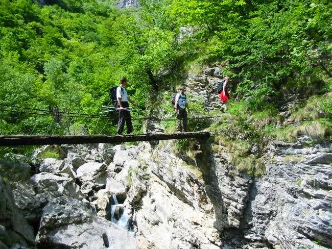 Bridge over Rakitnica -...