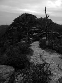 Trail at Linville Gorge