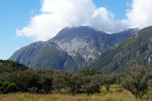 Mt Sebastopol
