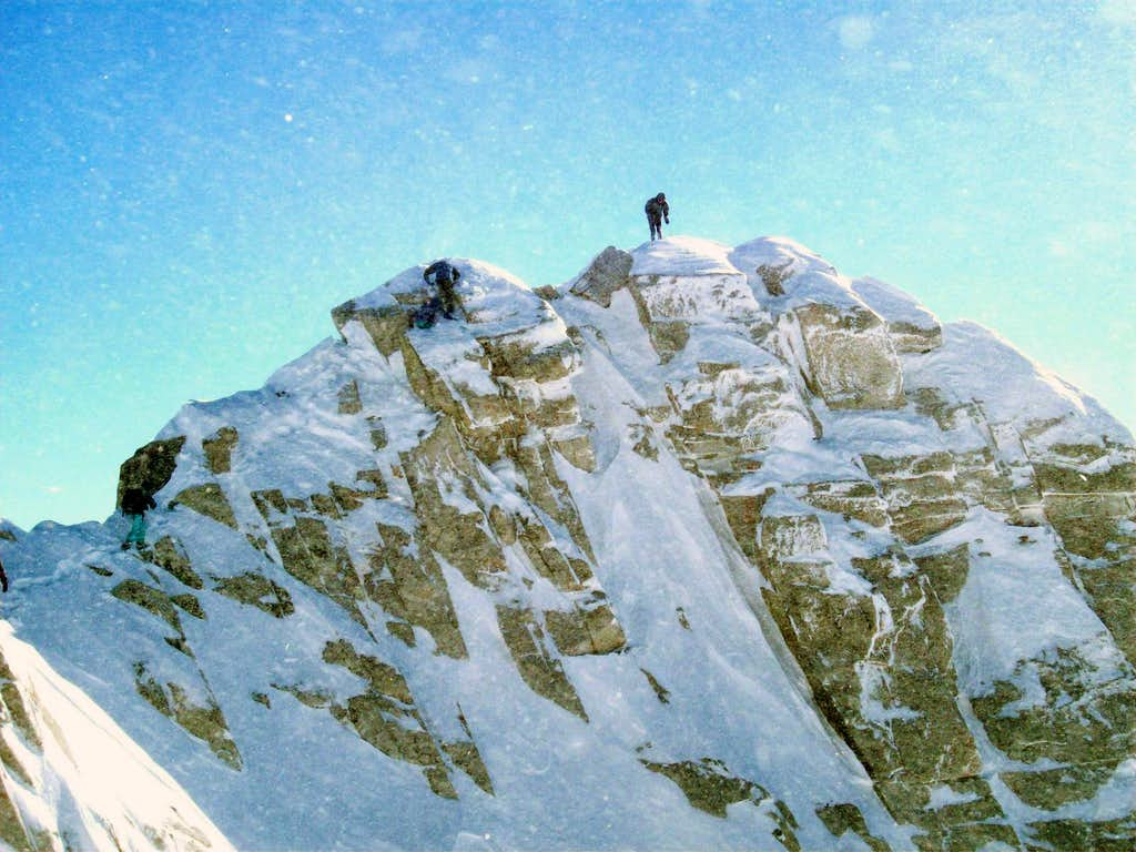 Grizz on Lone Peak Summit