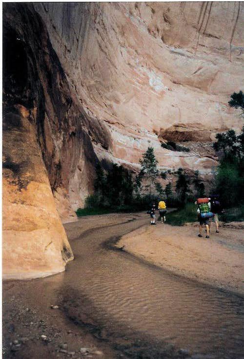 Deep Canyon, Shallow Stream