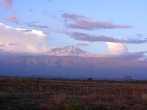 Kilimanjaro (8 Days Via Lemosho Route)
