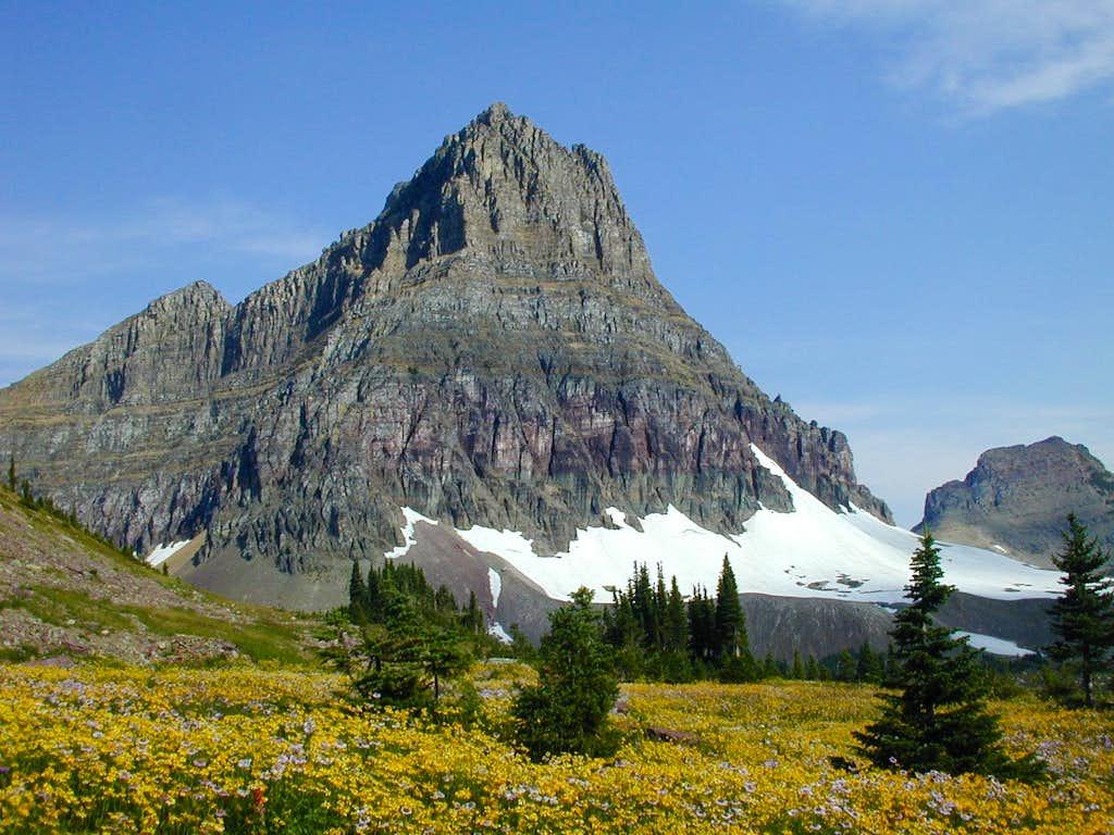 Mount Clements(GNP)