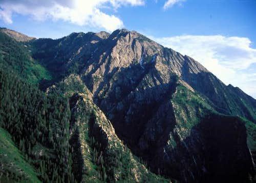 Mount Olympus  July 1995