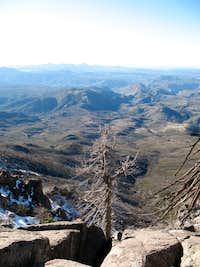 Atop Cuyamaca Peak, 2/08