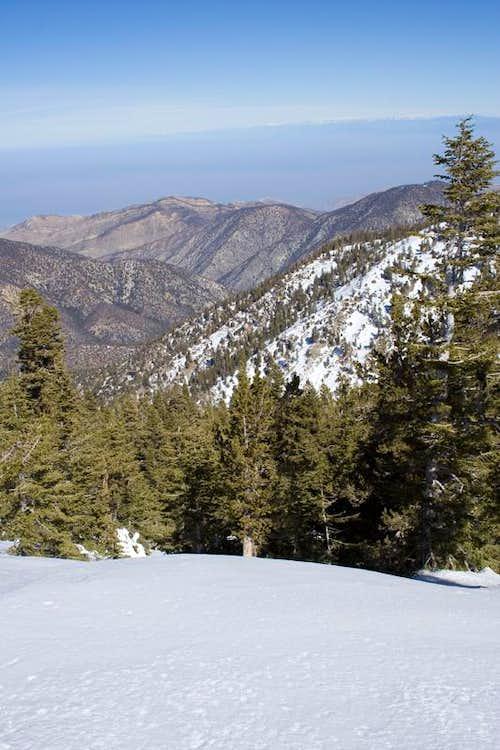 Mt. Pinos view