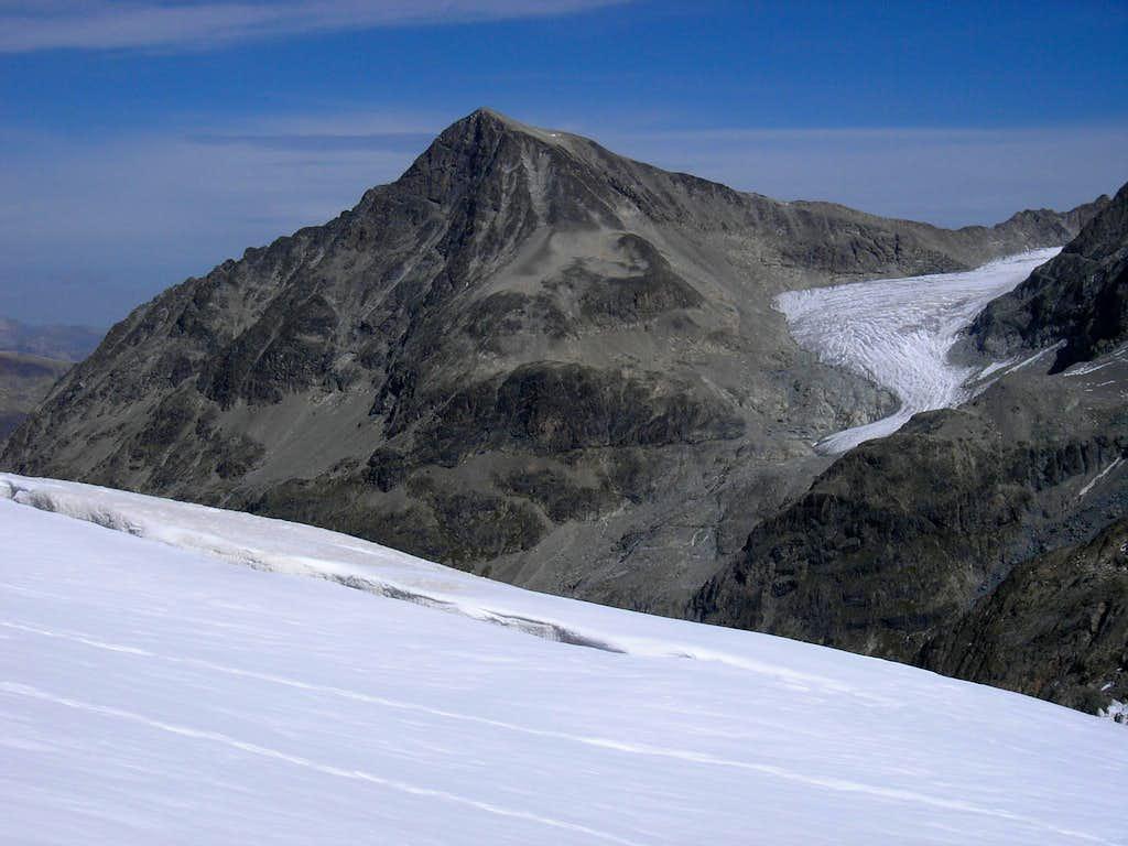 Piz Tschierva 3546m