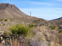 Dodson Trail