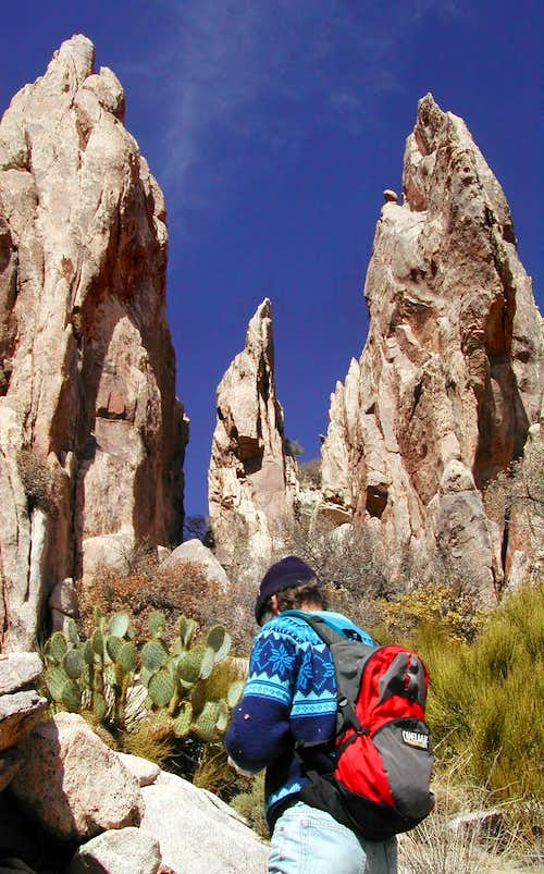 Granite Pinnacles on S Ridge
