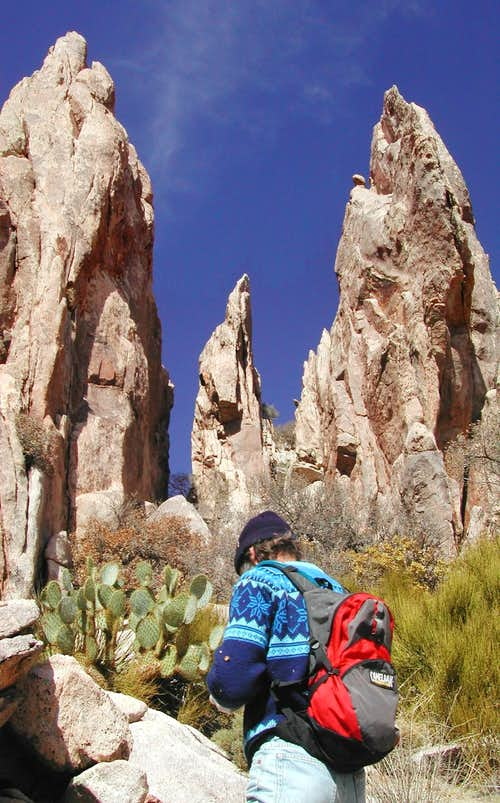 Granite Pinnacles on S Ridge