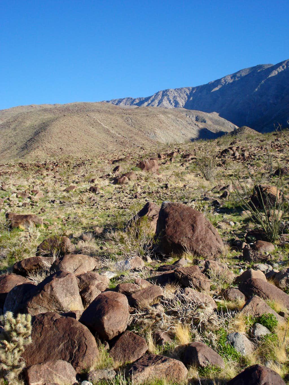 Trek across desert to Rabbit Peak