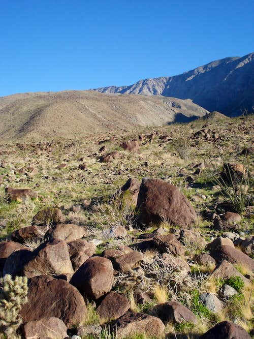 Trek across desert to Rabbit Peak