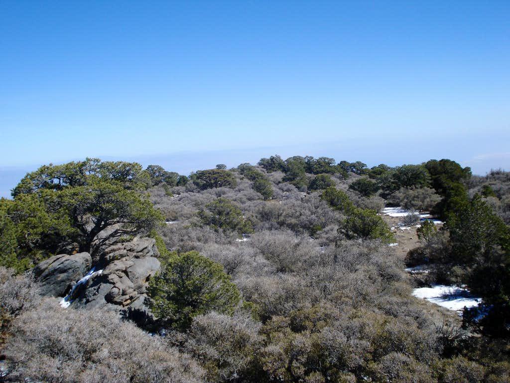 Rabbit Peak