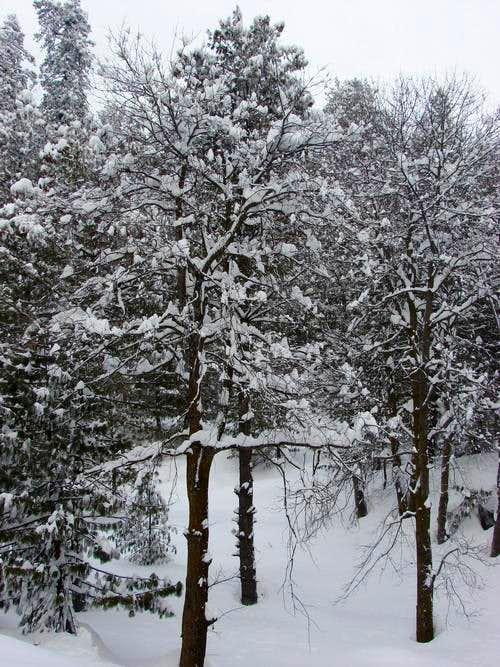 Winter in Kaghan Valley, Pakistan