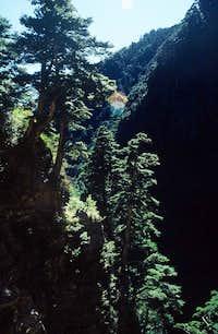Patungkuan Trail to Yun Shan