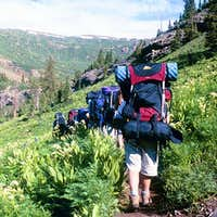 Williams Creek Trail