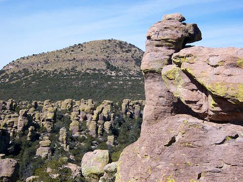 Sugarloaf Mountain from Echo Canyon