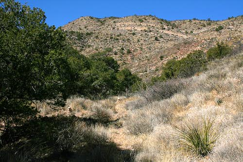 Thompson Canyon trail view