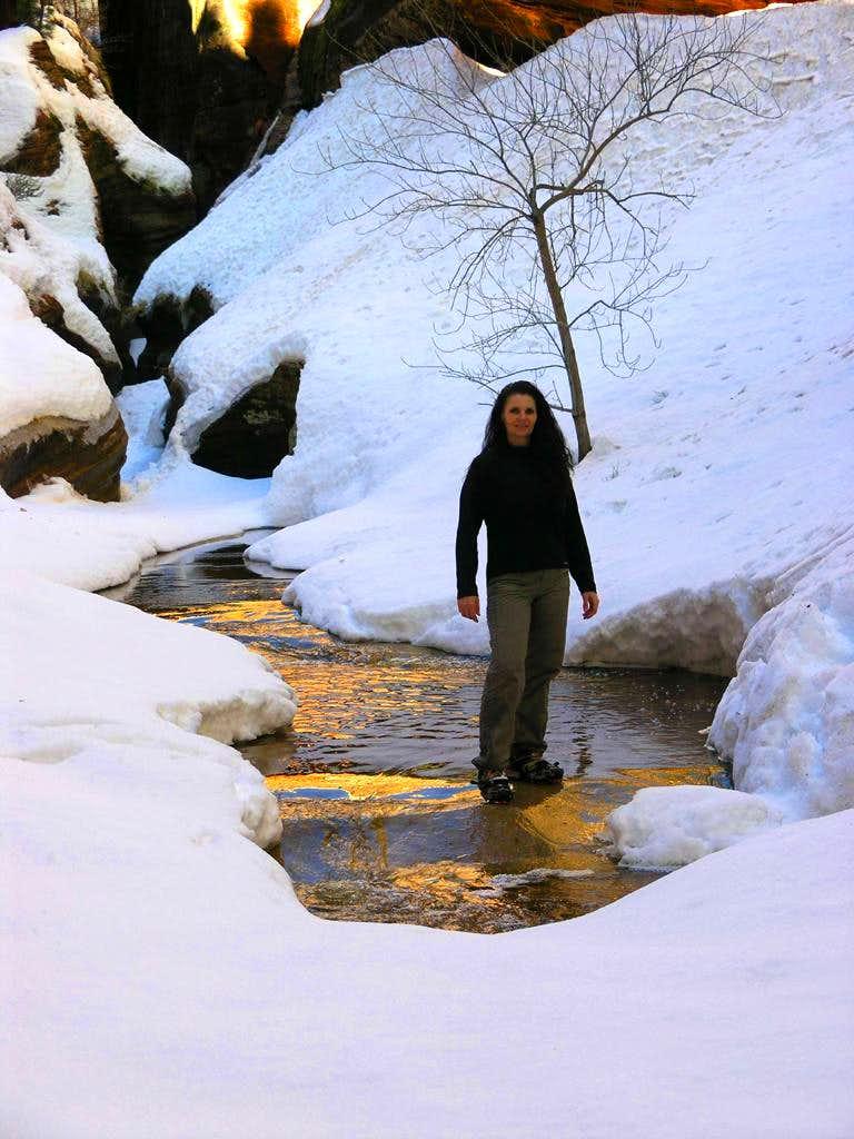 Zion in the Winter